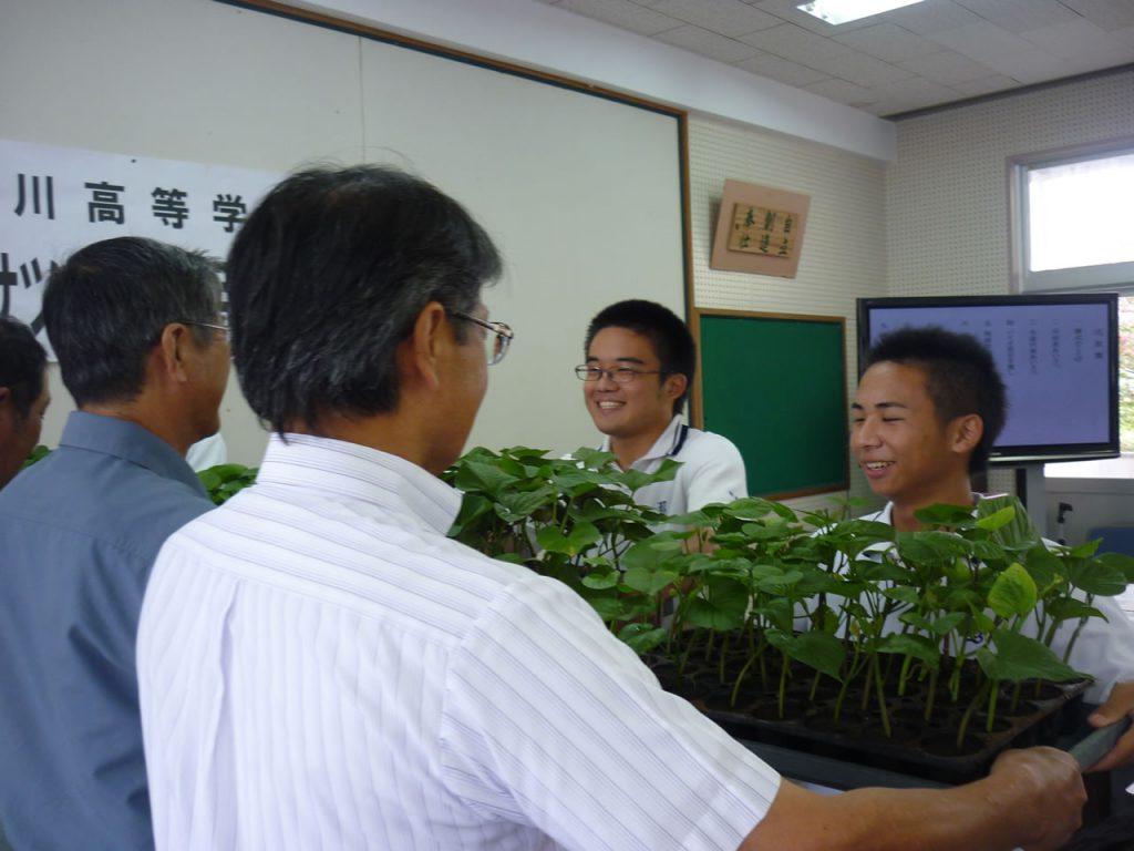 山川高校 バイオサツマイモ苗引渡し式