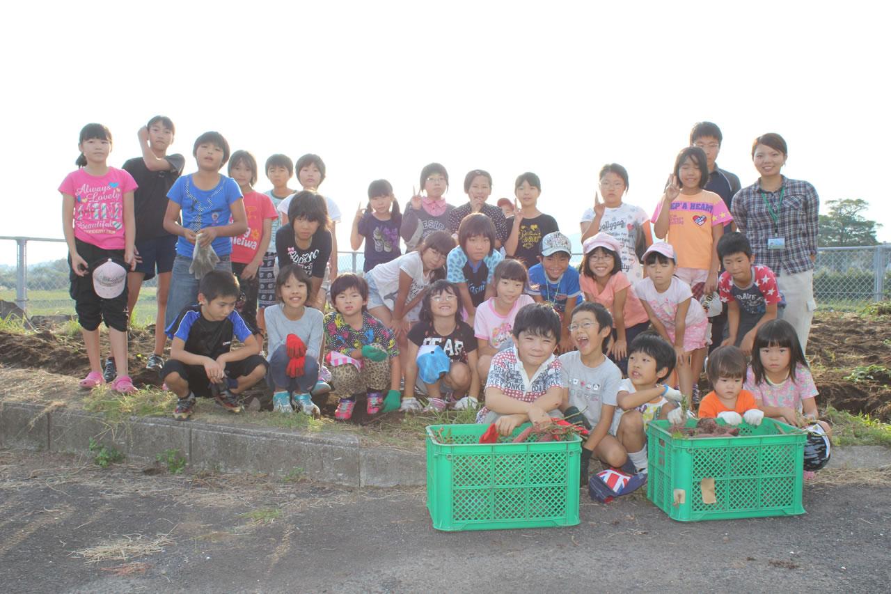 サツマイモ収穫祭