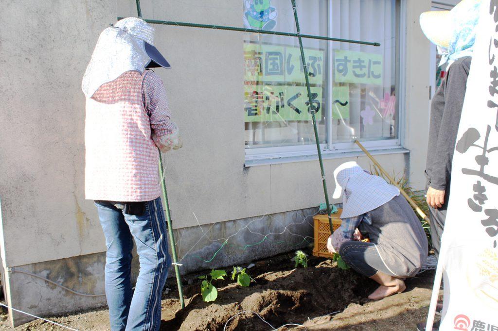 山川地区女性部グリーンカーテン設置