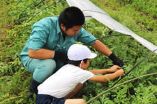 徳光小学校スイカ収穫・市場体験