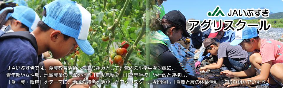 JAの食農教育活動についてはこちら