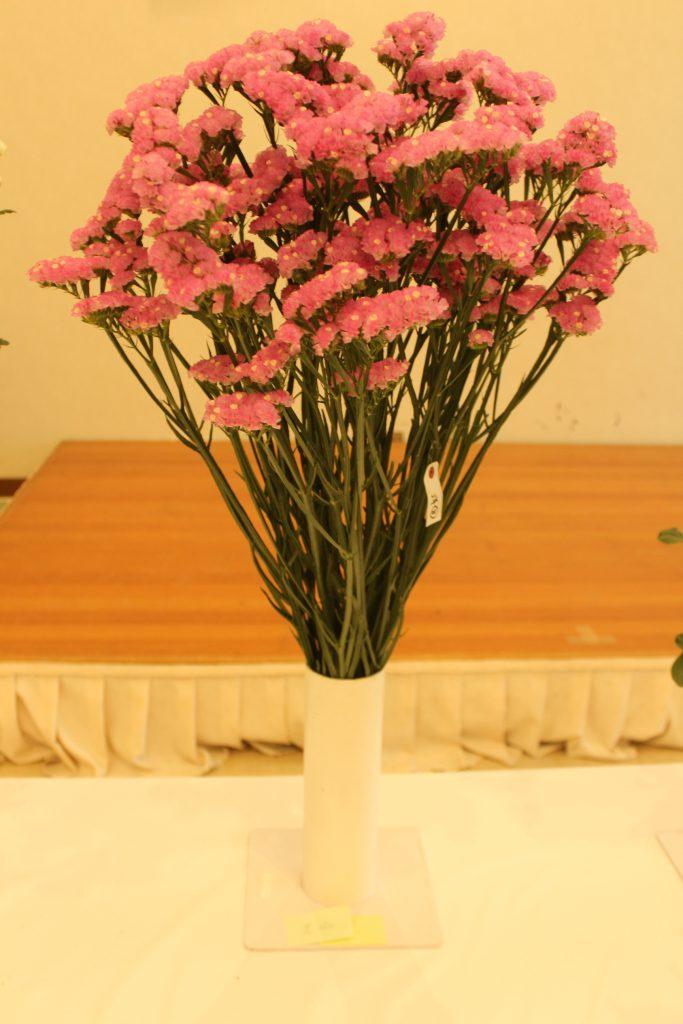 鹿児島花卉園芸農業協同組合長(スターチス)