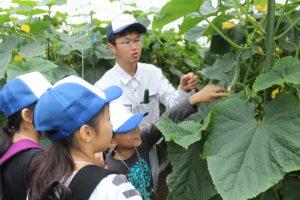 いぶすき 植物を観察して特徴を学ぶ あぐりスクール開校